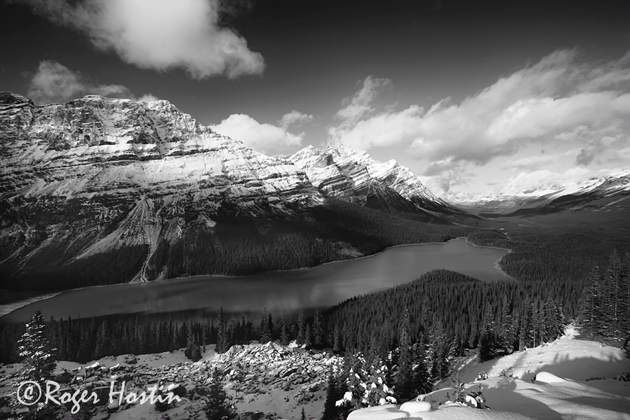 BW WEB 2010 11 08 Peyto Lake 203
